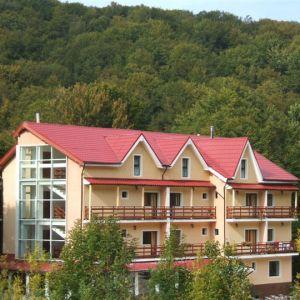 Hotel Panoramic Moneasa