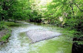 Râul Olănești